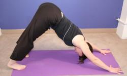 Yoga - nedadgående hund
