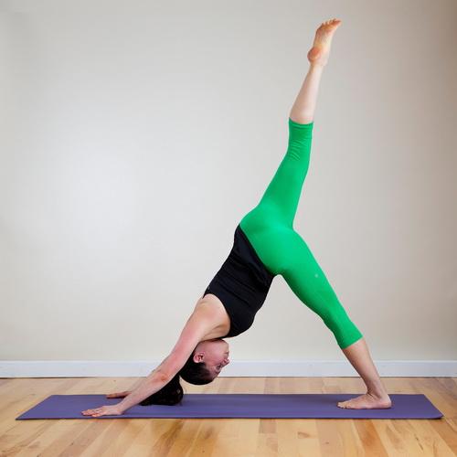 yoga tips hund
